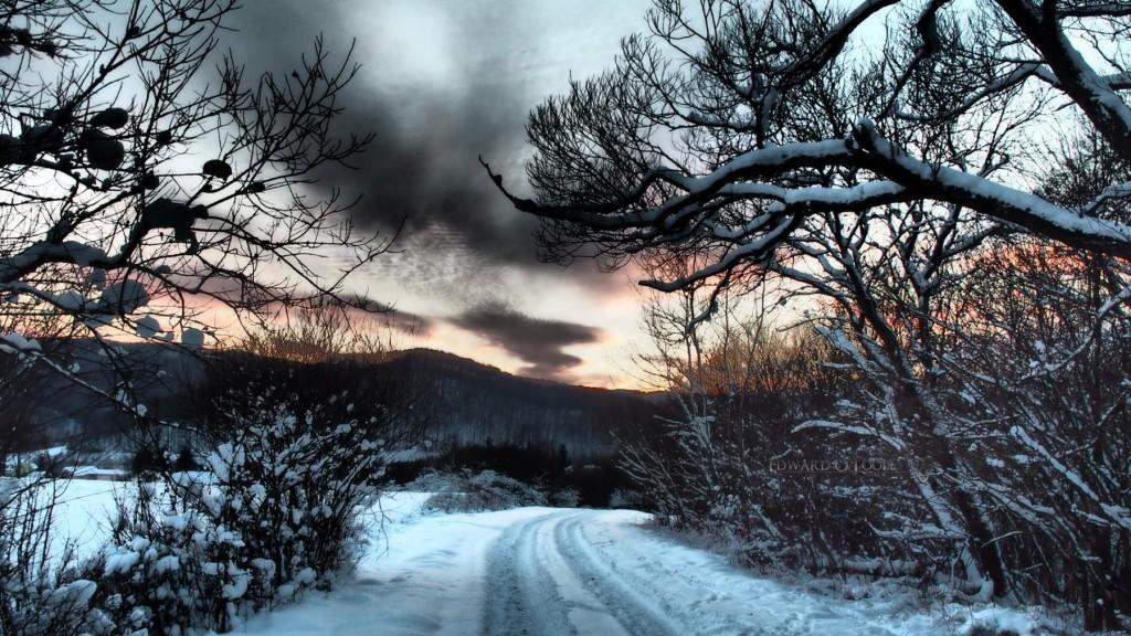 snowyeveningwalk