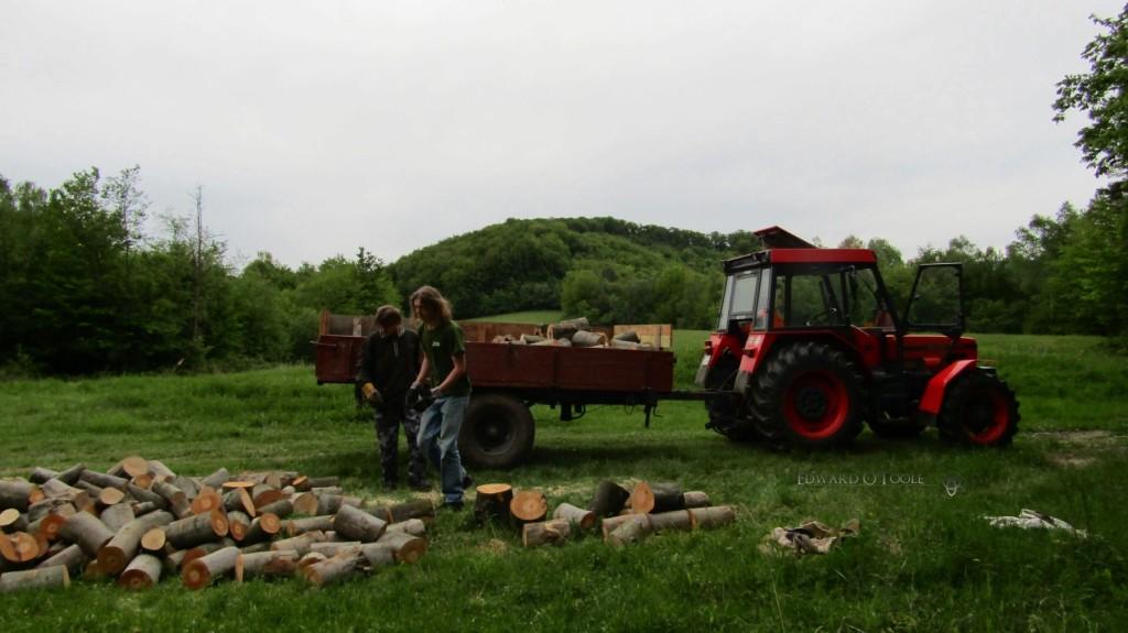 woodcollectingtractor1