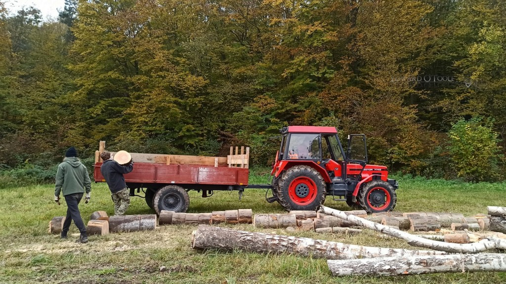 gettingwoodfromforestintractor
